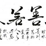 上善若水(行草138cm×69cm) (1图)